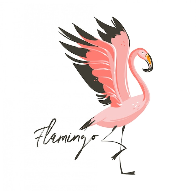 Hand drawn   abstract cartoon summer time graphic decoration illustrations art with exotic tropical rainforest flamingo bird isolated on white background