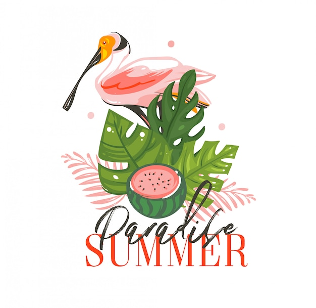 Hand drawn  abstract graphic cartoon summer time  illustrations sign with tropical birds ,tropical palm leaves ,watermelon and paradise summer typography quote  on white background