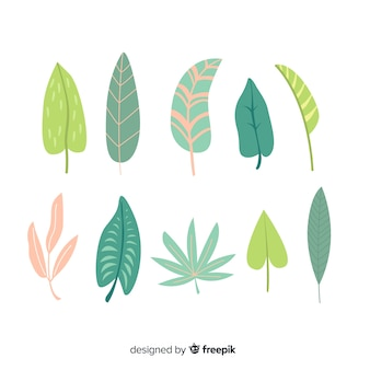 Hand drawn abstract leaves collection