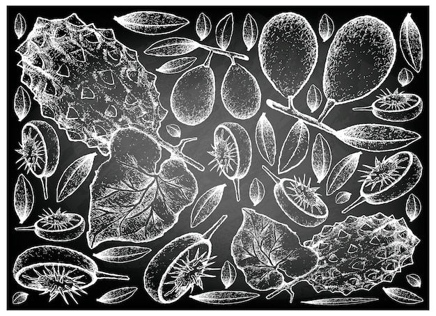 Hand drawn of ambarella and horned melon on chalkboard