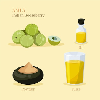 Hand drawn amla fruit elements pack