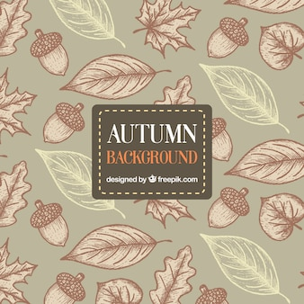 Hand drawn autumn background with artistic style
