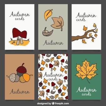 Carte di autunno disegnate a mano con elementi naturali