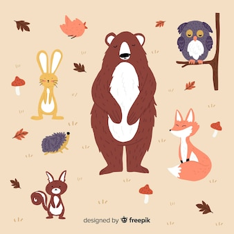 Hand drawn autumn forest animal collection
