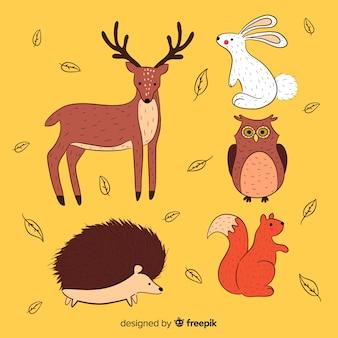 손으로 그린가 숲 동물 컬렉션