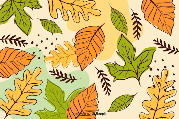 Hand drawn autumn forest leaves background