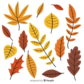 Hand drawn autumn forest leaves collection
