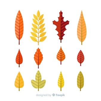 손으로 그린가 숲 나뭇잎 컬렉션