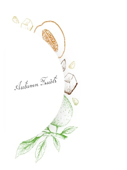 Hand drawn of autumn fruits, honeydew melons and apple