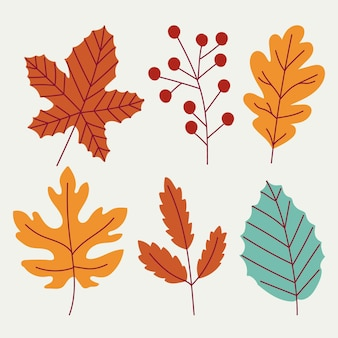 Hand drawn autumn leaves collection