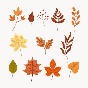 Collezione di foglie autunnali disegnate a mano