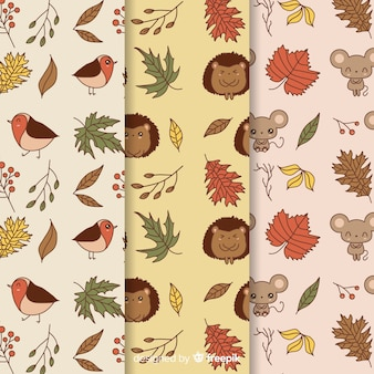 Hand drawn autumn pattern collection