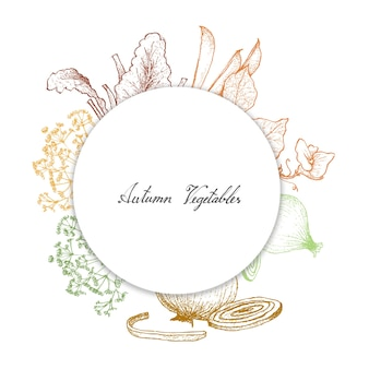Hand drawn of autumn vegetables and herbs