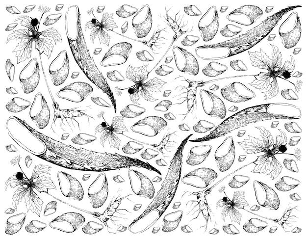 アロエベラとゴールデンシール植物の手描きの背景