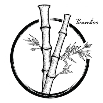Hand drawn bamboo