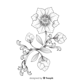 Hand drawn baroque flowers
