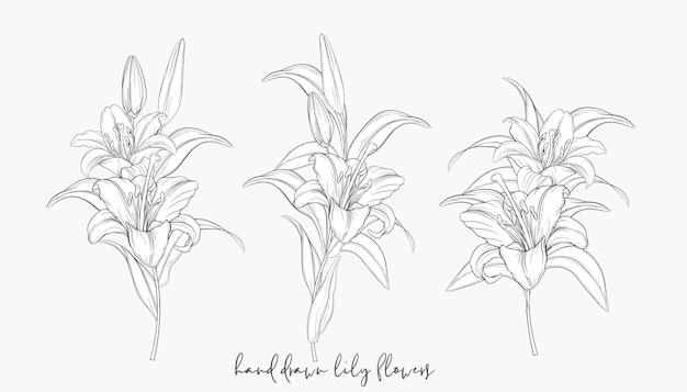手描きの美しいユリの花束
