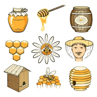 Icone disegnate a mano di apicoltura, miele e api. cibo dolce, insetti e cellule, botte e favo
