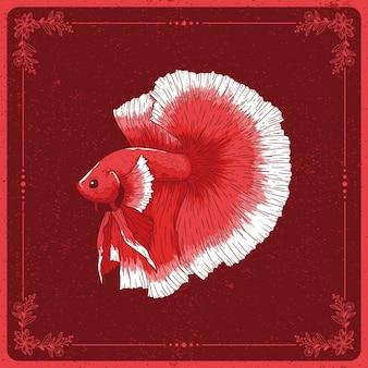 手描きのベタの魚のイラスト