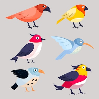 Hand drawn bird collection