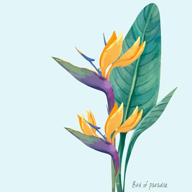 Hand drawn bird of paradise flower