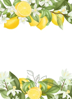 Hand drawn blooming lemon tree branches, flowers and lemons.