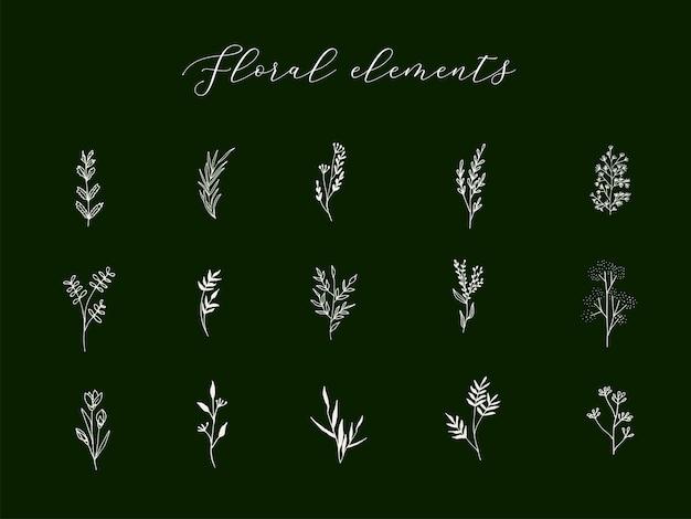 트렌디한 선형 스타일의 손으로 그린 식물 요소