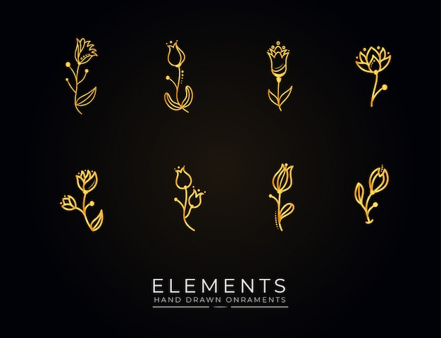 Hand drawn botanical flowers elements collection golden