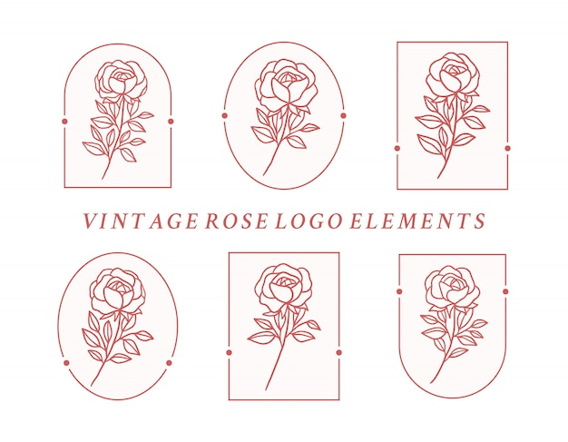 Hand drawn botanical rose flower logo element collection