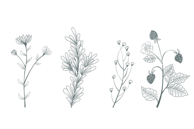 Hand drawn botanical wild flowers