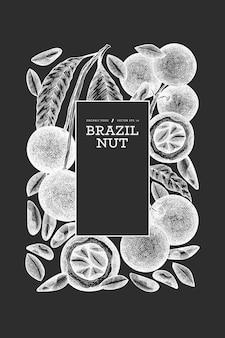 手描きのブラジルナッツの枝とカーネルのデザインテンプレート。チョークボード上の有機食品のイラスト。ヴィンテージナッツのイラスト。刻まれたスタイルの植物のバナー。