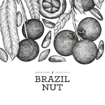 手描きのブラジルナッツの枝とカーネルのデザインテンプレート。白い背景の上の有機食品のイラスト。レトロなナットのイラスト。刻まれたスタイルの植物のバナー。