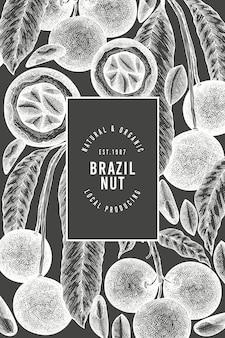 손으로 그린 브라질 너트 가지와 커널 디자인 템플릿. 분필 보드에 유기농 식품 벡터 일러스트입니다. 레트로 너트 그림입니다. 빈티지 스타일 식물 배너입니다.