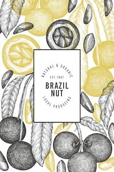 손으로 그린 브라질 너트 분기 및 커널 디자인 서식 파일.
