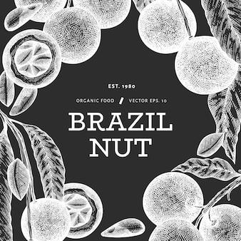 手描きのブラジルナッツの枝とカーネルのテンプレート。チョークボード上の有機食品のイラスト。レトロなナットのイラスト。刻まれたスタイルの植物のバナー。