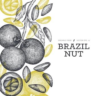 手描きのブラジルナッツの枝とカーネルのテンプレート。白い背景の上の有機食品のイラスト。レトロなナットのイラスト。刻まれたスタイルの植物のバナー。