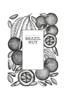 손으로 그린 브라질 너트 분기 및 커널 템플릿. 흰색 바탕에 유기농 식품 그림입니다. 빈티지 너트 그림입니다. 새겨진 스타일의 식물.