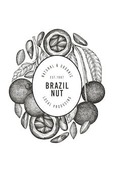 Hand drawn brazilian nut branch and kernels label template.