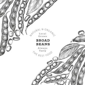 손으로 그린 넓은 콩 디자인 템플릿입니다. 유기농 신선한 음식 그림입니다. 레트로 포드 그림입니다. 새겨진된 식물 스타일 시리얼 배경입니다.