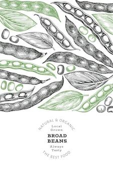 손으로 그린 넓은 콩 디자인 템플릿입니다. 유기농 신선한 음식 벡터 일러스트 레이 션. 레트로 포드 그림입니다. 새겨진된 식물 스타일 시리얼 배경입니다.