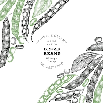 Hand drawn broad beans label template