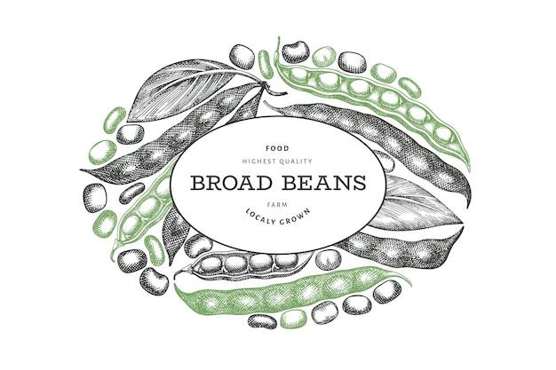 손으로 그린 넓은 콩. 유기농 신선한 식품 라벨