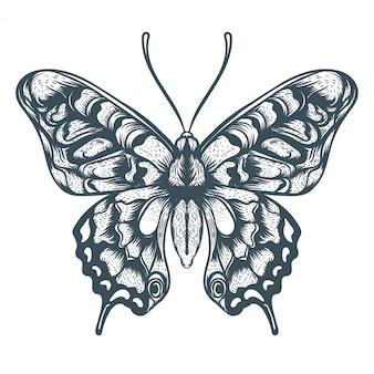 손으로 그린 나비 그림