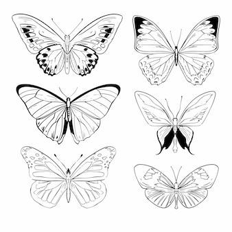 Коллекция рисованной бабочки