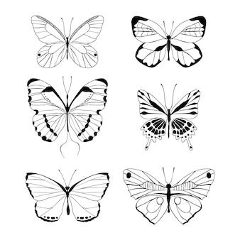 손으로 그린 나비 개요 팩