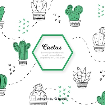 Hand drawn cactus doodle background