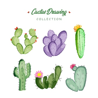 Hand drawn cactus drawing