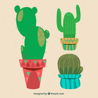 Hand drawn cactus with original style