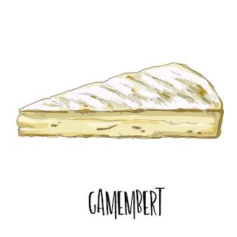 Hand drawn camembert illustration