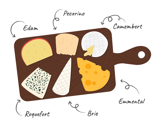 Hand drawn cheeseboard illustrated
